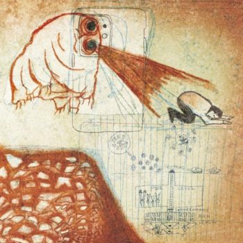 Deerhoof: Future Teenage Cave Artists [LP rouge]