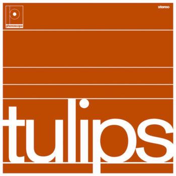 Maston: Tulips [LP]