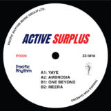 "Active Surplus: Active Surplus [12""]"