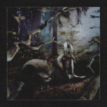 Earl Sweatshirt: Feet Of Clay [LP]