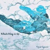 Symons, David: Which Way Is Up [CD]