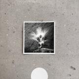 Frahm, Nils: Empty [LP]