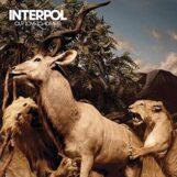 Interpol: Our Love to Admire [2xLP bleus]