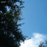 Cloud Nothings: Turning On — édition 10e anniversaire [LP]