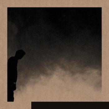 Allred, David: Felt The Transition [LP]