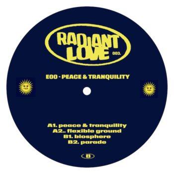 "E00: Peace & Tranquility [12""]"