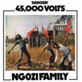 Ngozi Family: 45,000 Volts [LP]