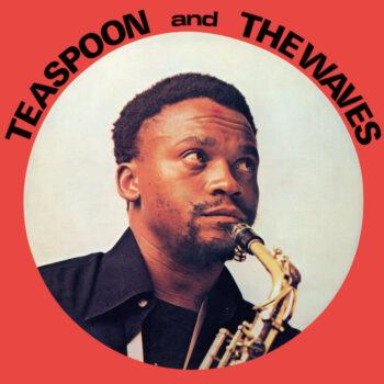 Teaspoon & The Waves: Teaspoon & The Waves [LP]