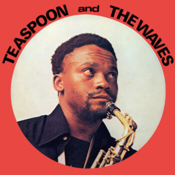 Teaspoon & The Waves: Teaspoon & The Waves [CD]