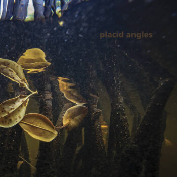 Placid Angles: Touch The Earth [3xLP]