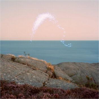 Jenkins, Cassandra: An Overview On Phenomenal Nature [CD]