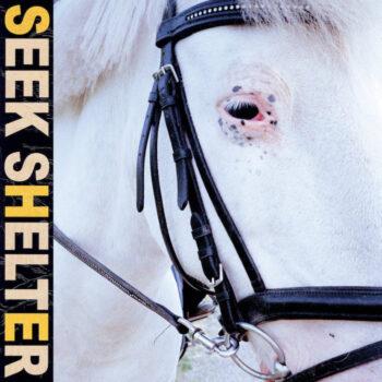 Iceage: Seek Shelter [LP, vinyle orange]