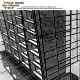 Triosk meets Jan Jelinek: 1+3+1 [LP]