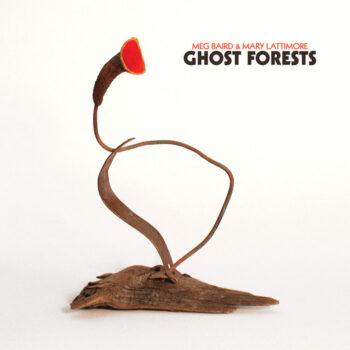Baird & Mary Lattimore, Meg: Ghost Forests [LP, vinyle clair]