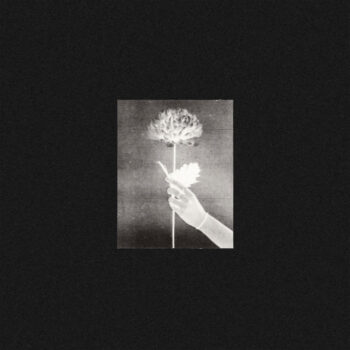 White Flowers: Day By Day [LP, vinyle bleu]