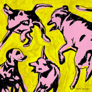 Jacobs, Paul: Pink Dogs on the Green Grass [LP]