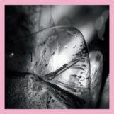 Loscil: Clara [CD]