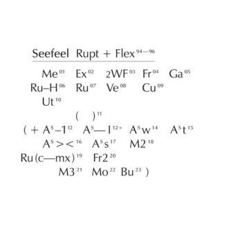 Seefeel: Rupt + Flex 94-96 [4xCD]