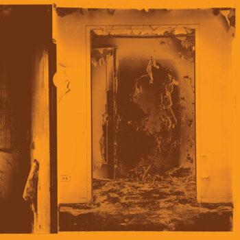 FACS: Present Tense [LP, vinyle coloré]