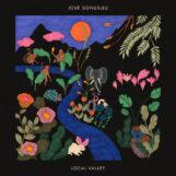 González, José: Local Valley [LP, vinyle vert]