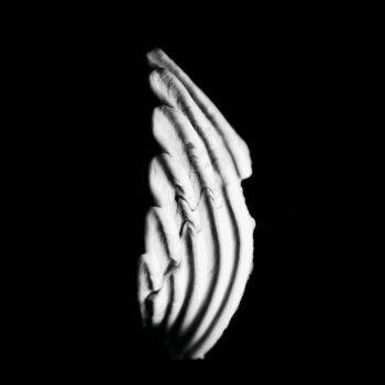 KMRU: Logue [LP, vinyle clair]