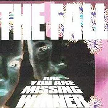 Fall, The: Are You Are Missing Winner [2xLP, vinyle pourpre et gris]