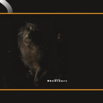 Lambchop: Showtunes — édition 'Peak' [LP, vinyle coloré]