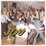 Idles: Joy as an Act of Resistance [LP, vinyle magenta clair]