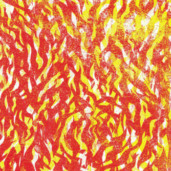 Bug, The: Fire [CD]