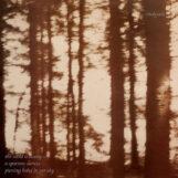 Cindytalk: The Wind Is Strong [LP, vinyle coloré]