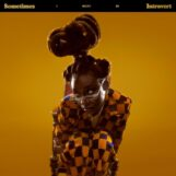 Little Simz: Sometimes I Might Be Introvert [CD]
