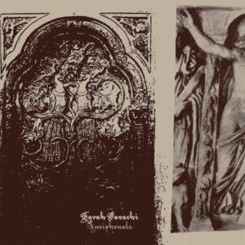 Davachi, Sarah: Antiphonals [LP, vinyle argenté]