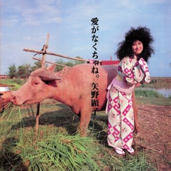 Akiko Yano: Ai Ga Nakucha Ne [CD]