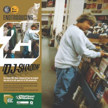"""DJ Shadow: Endtroducing 25 [2xLP, repiquage """"half-speed""""]"""